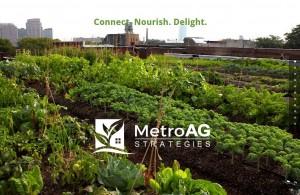 MetroAG Strategies